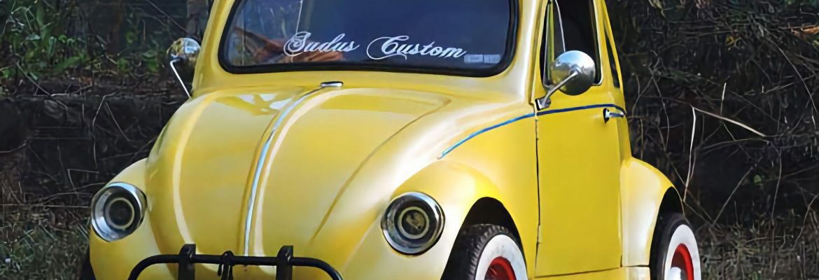 Home-built Volkswagen Beetle from India